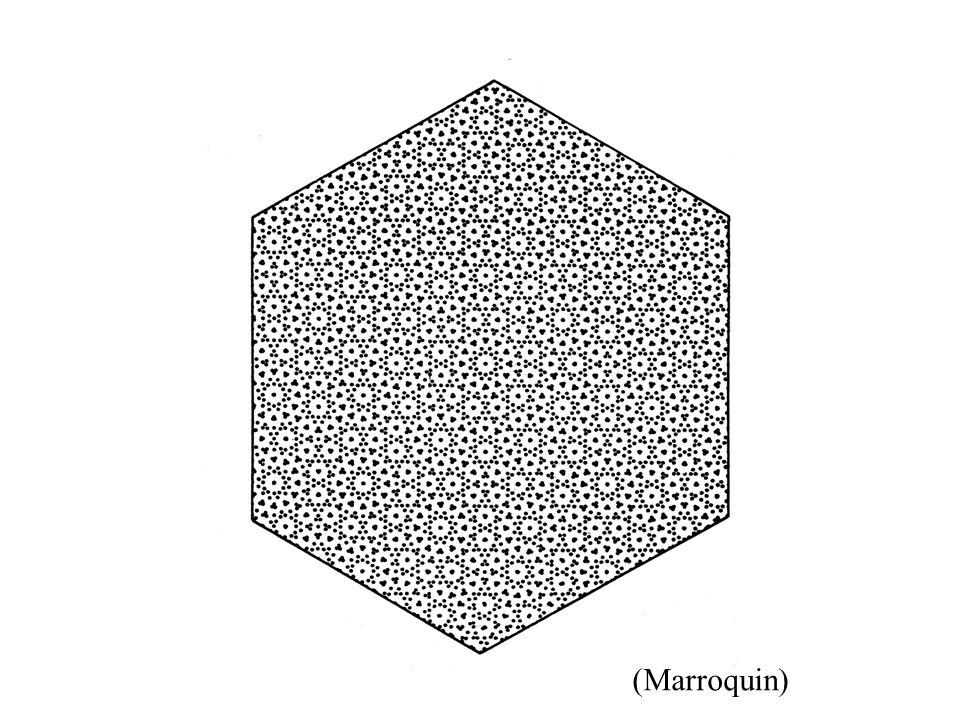 (Marroquin)