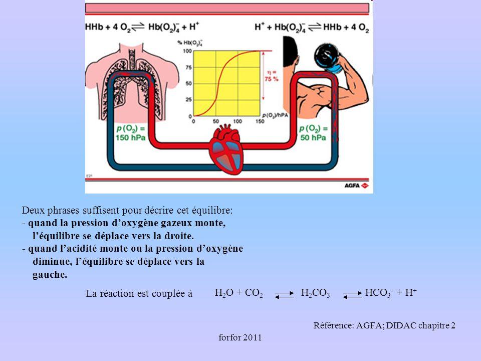 forfor 2011 Deux phrases suffisent pour décrire cet équilibre: - quand la pression doxygène gazeux monte, léquilibre se déplace vers la droite.