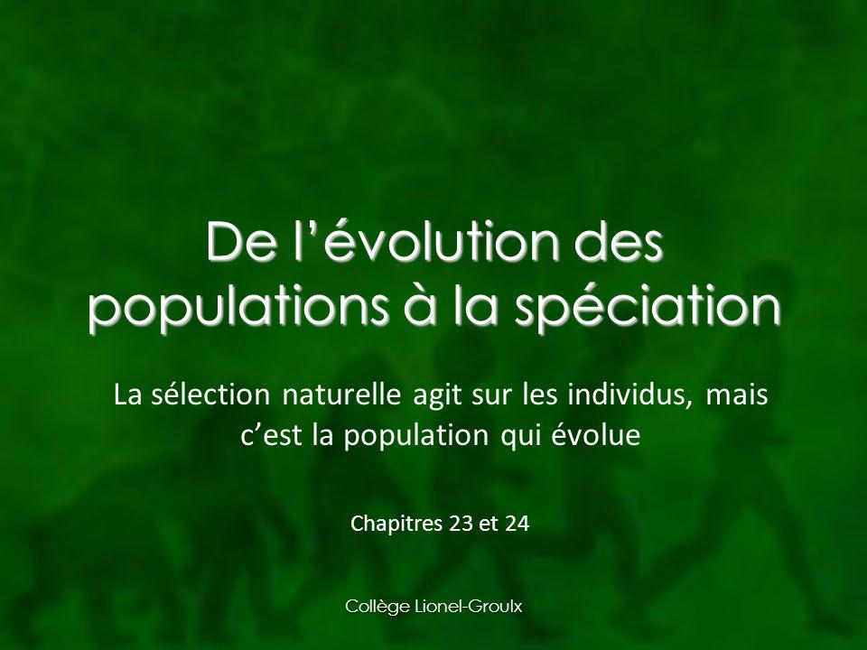 Collège Lionel-Groulx De lévolution des populations à la spéciation La sélection naturelle agit sur les individus, mais cest la population qui évolue Chapitres 23 et 24