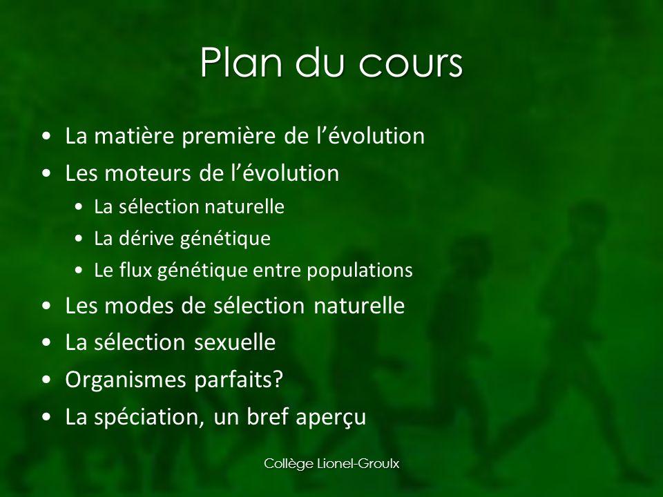Plan du cours La matière première de lévolution Les moteurs de lévolution La sélection naturelle La dérive génétique Le flux génétique entre populations Les modes de sélection naturelle La sélection sexuelle Organismes parfaits.