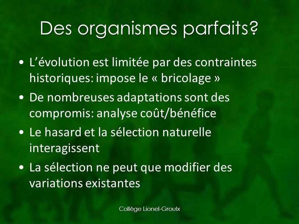 Des organismes parfaits.