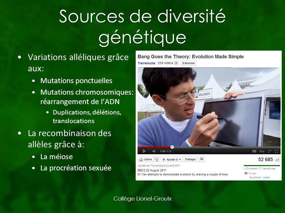 Sélection intersexuelle Collège Lionel-Groulx
