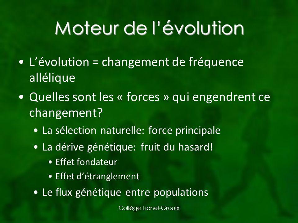 Moteur de lévolution Lévolution = changement de fréquence allélique Quelles sont les « forces » qui engendrent ce changement.