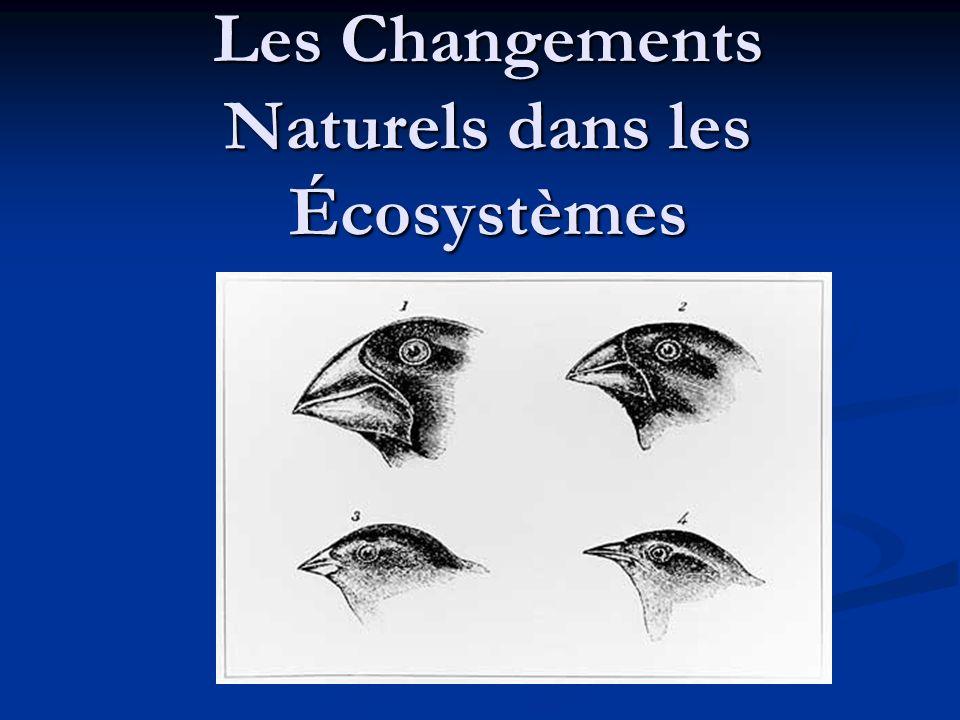 Les Changements Naturels dans les Écosystèmes