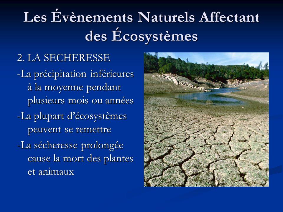 Les Évènements Naturels Affectant des Écosystèmes 2. LA SECHERESSE -La précipitation inférieures à la moyenne pendant plusieurs mois ou années -La plu