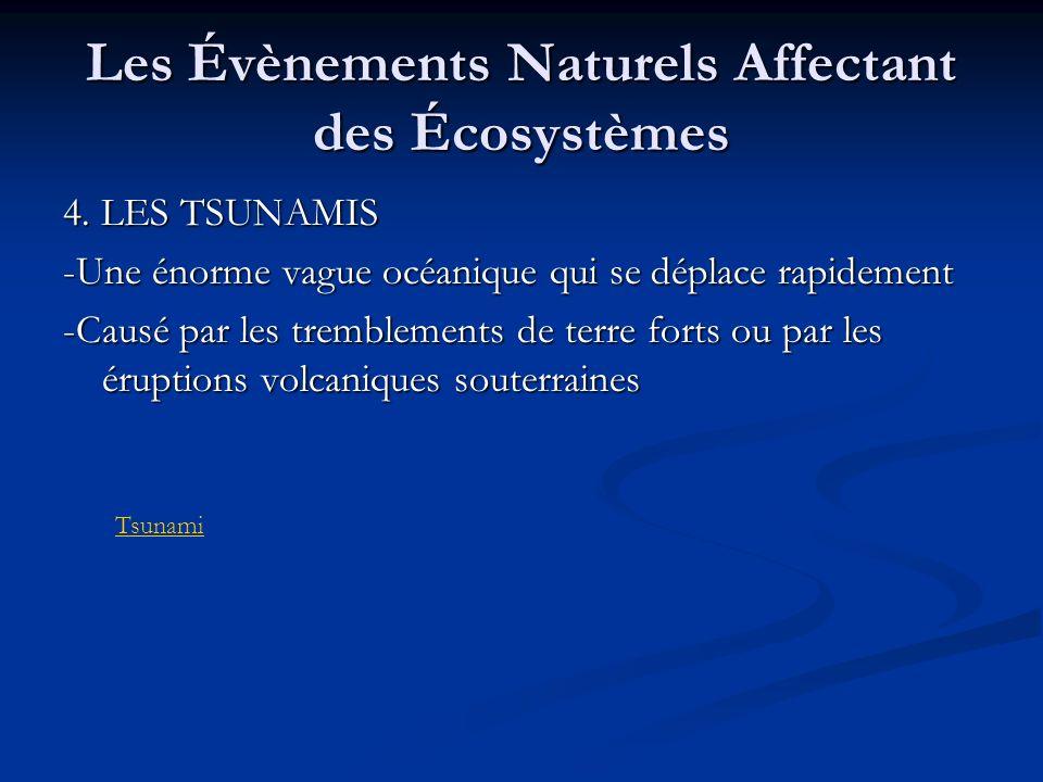 Les Évènements Naturels Affectant des Écosystèmes 4. LES TSUNAMIS -Une énorme vague océanique qui se déplace rapidement -Causé par les tremblements de