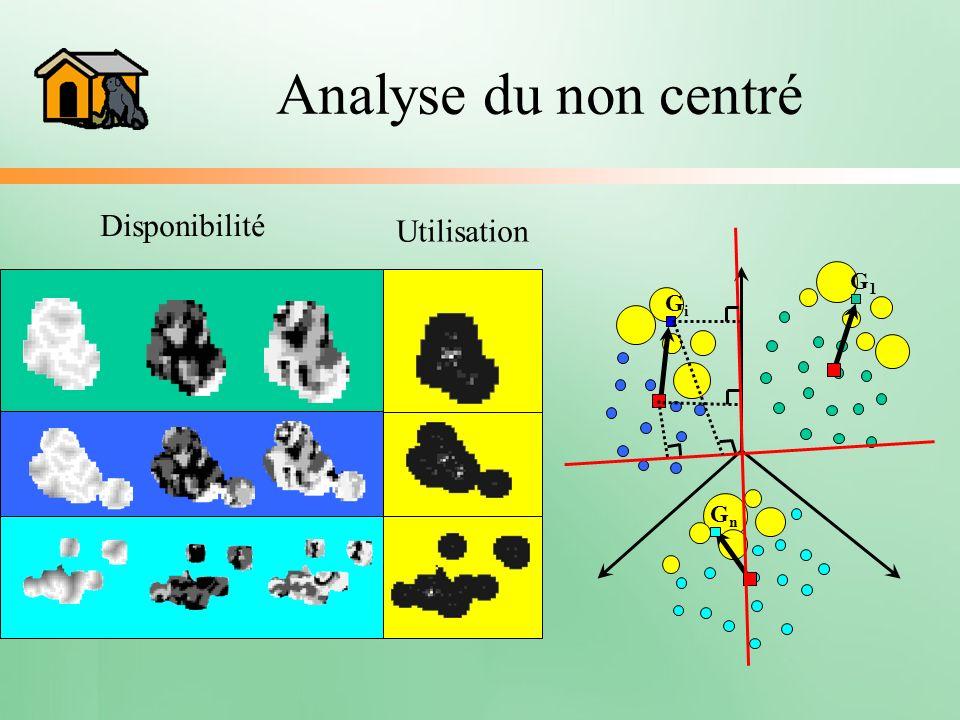 Analyse du non centré Disponibilité Utilisation G1G1 GiGi GnGn