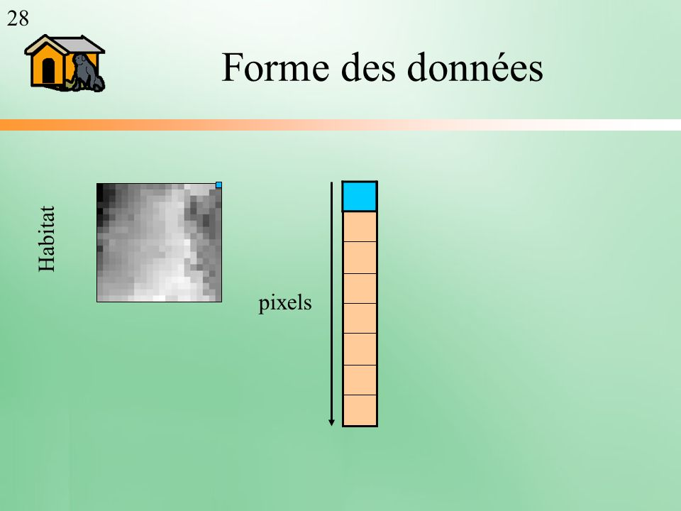 Forme des données pixels Habitat 28