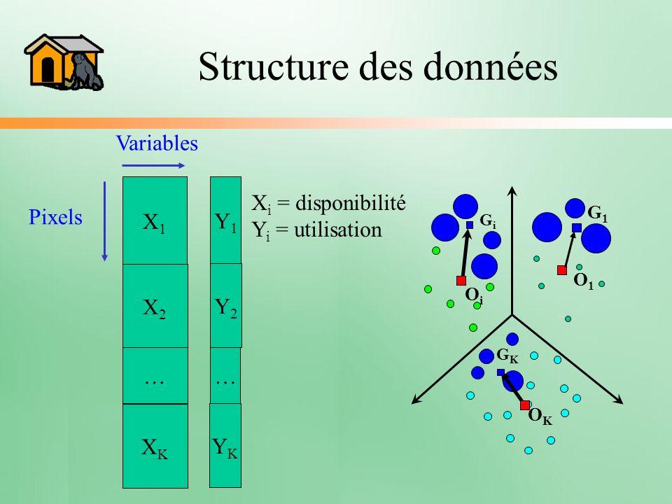 Structure des données X1X1 Y1Y1 X2X2 … XKXK Y2Y2 … YKYK Pixels Variables X i = disponibilité Y i = utilisation OKOK OiOi GiGi GKGK O1O1 G1G1