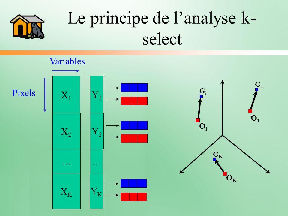 Le principe de lanalyse k- select X1X1 Y1Y1 X2X2 … XKXK Y2Y2 … YKYK Pixels Variables G1G1 O1O1 OiOi GiGi OKOK GKGK