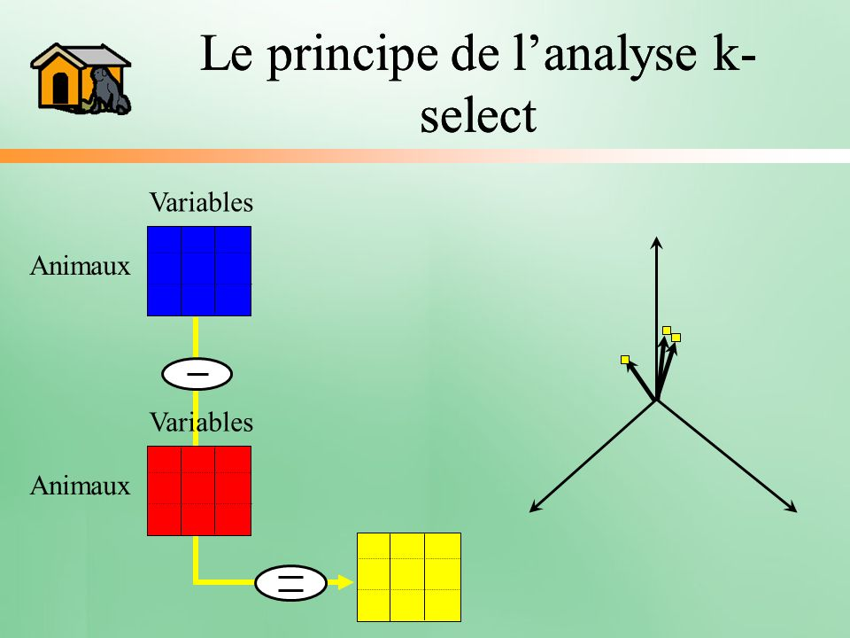 Le principe de lanalyse k- select Variables Animaux Variables Animaux