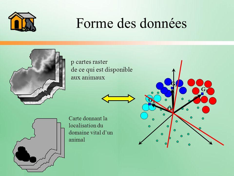 Forme des données p cartes raster de ce qui est disponible aux animaux Carte donnant la localisation du domaine vital dun animal O G1G1 GiGi GnGn