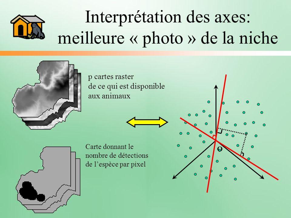 Interprétation des axes: meilleure « photo » de la niche p cartes raster de ce qui est disponible aux animaux Carte donnant le nombre de détections de