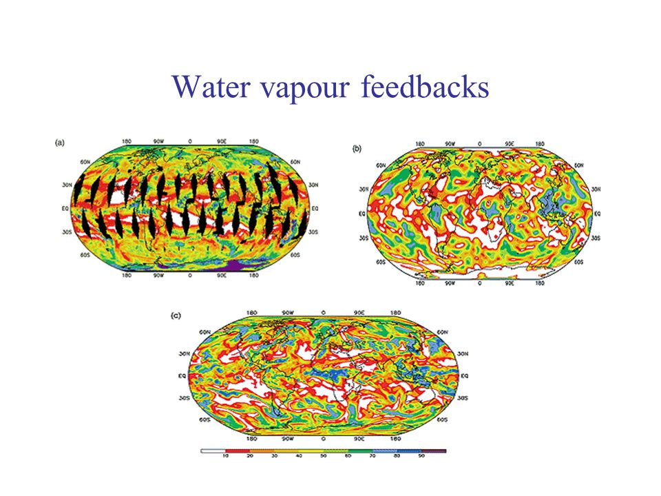 Water vapour feedbacks