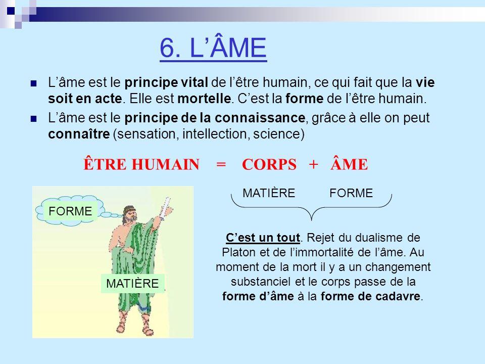 6. LÂME Lâme est le principe vital de lêtre humain, ce qui fait que la vie soit en acte. Elle est mortelle. Cest la forme de lêtre humain. Lâme est le