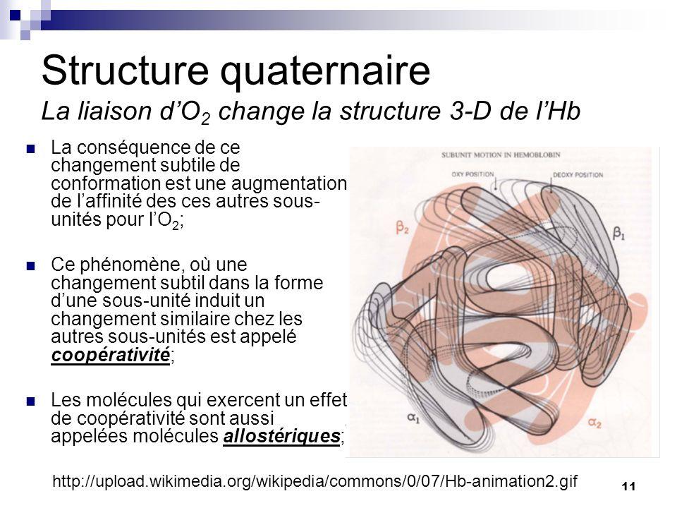 CHMI 2227 - E.R. Gauthier, Ph.D. 11 Structure quaternaire La liaison dO 2 change la structure 3-D de lHb La conséquence de ce changement subtile de co