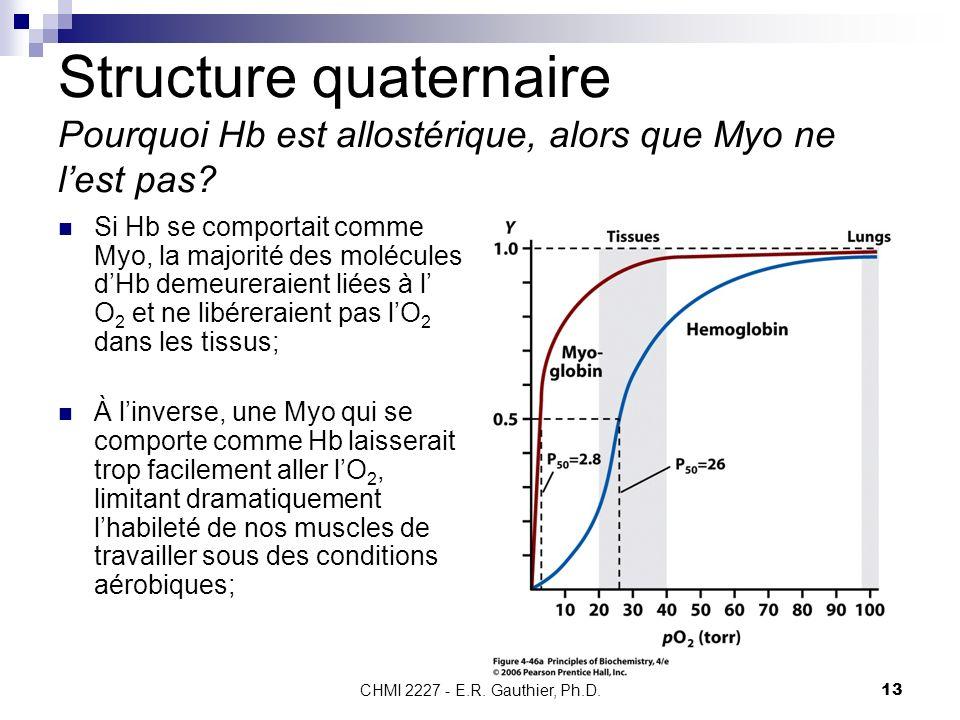 CHMI 2227 - E.R. Gauthier, Ph.D. 13 Structure quaternaire Pourquoi Hb est allostérique, alors que Myo ne lest pas? Si Hb se comportait comme Myo, la m
