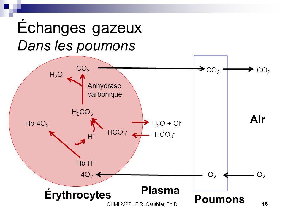 CHMI 2227 - E.R. Gauthier, Ph.D. 16 Échanges gazeux Dans les poumons Poumons Érythrocytes CO 2 H2OH2O Anhydrase carbonique H 2 CO 3 HCO 3 - H+H+ Plasm