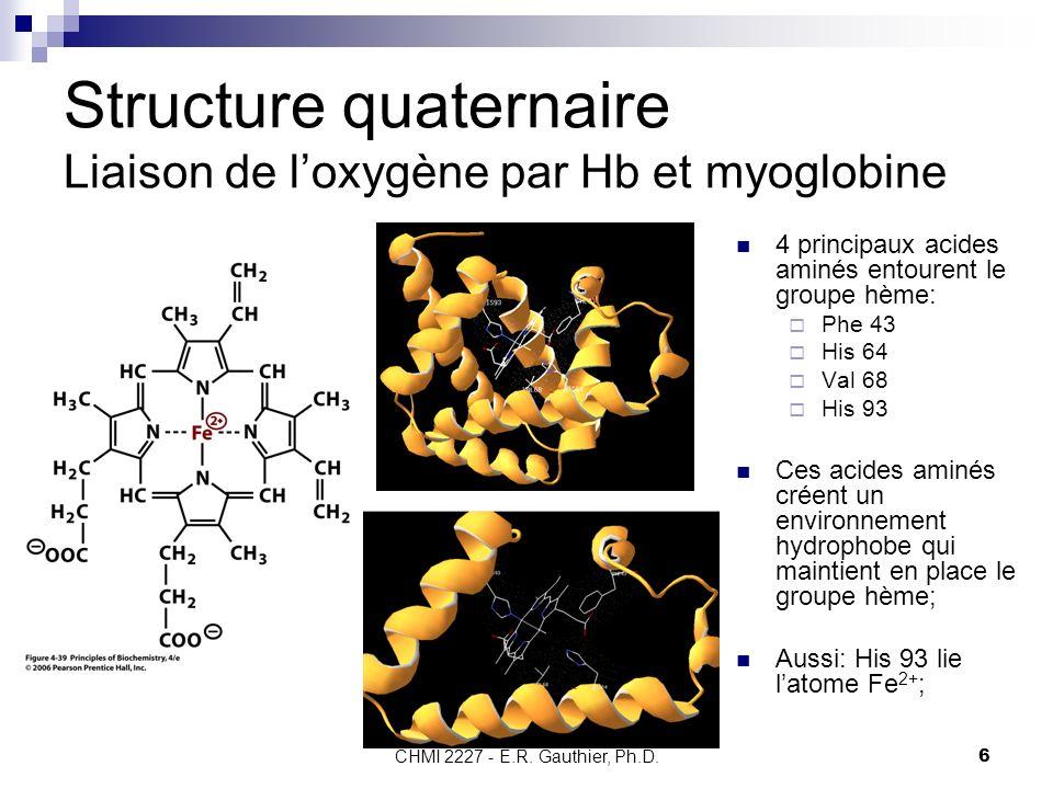 CHMI 2227 - E.R. Gauthier, Ph.D. 6 Structure quaternaire Liaison de loxygène par Hb et myoglobine 4 principaux acides aminés entourent le groupe hème: