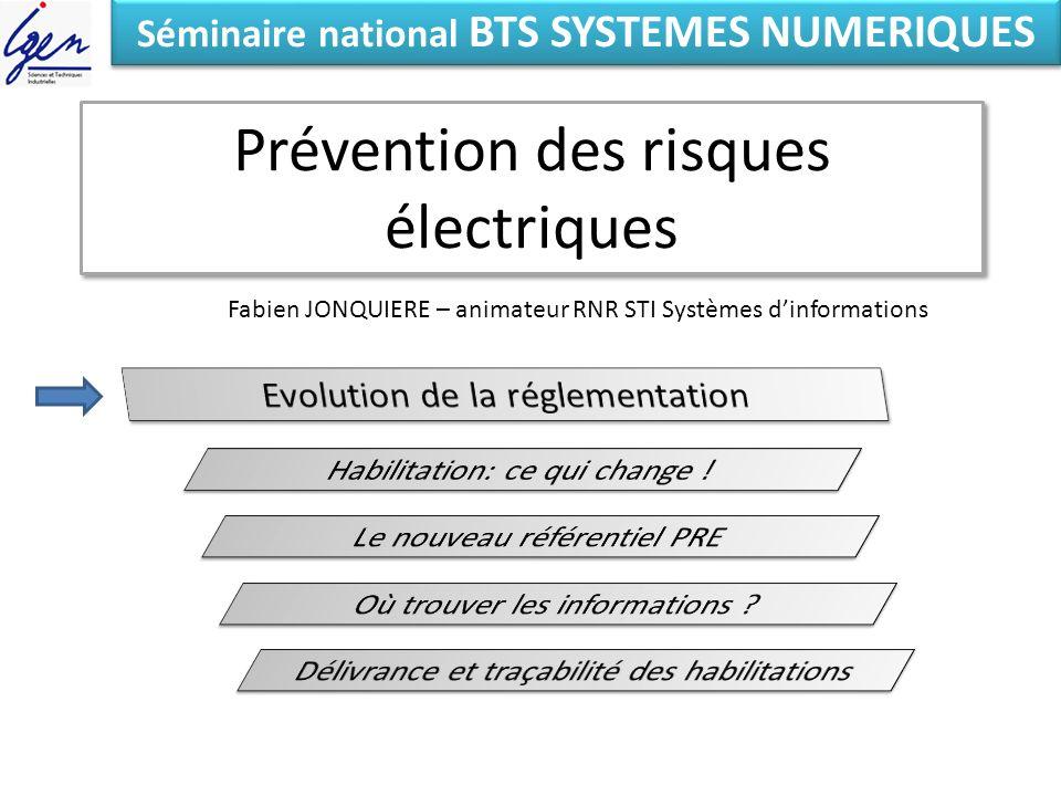 Prévention des risques électriques Eléments de constat Séminaire national BTS SYSTEMES NUMERIQUES Fabien JONQUIERE – animateur RNR STI Systèmes dinformations