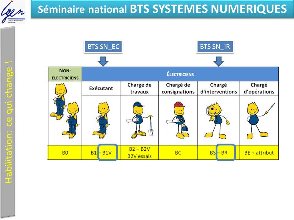 Eléments de constat Séminaire national BTS SYSTEMES NUMERIQUES BTS SN_EC BTS SN_IR