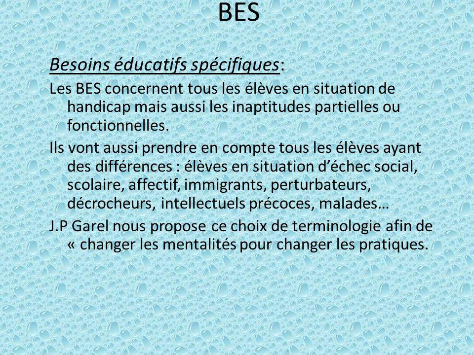 BES Besoins éducatifs spécifiques: Les BES concernent tous les élèves en situation de handicap mais aussi les inaptitudes partielles ou fonctionnelles.