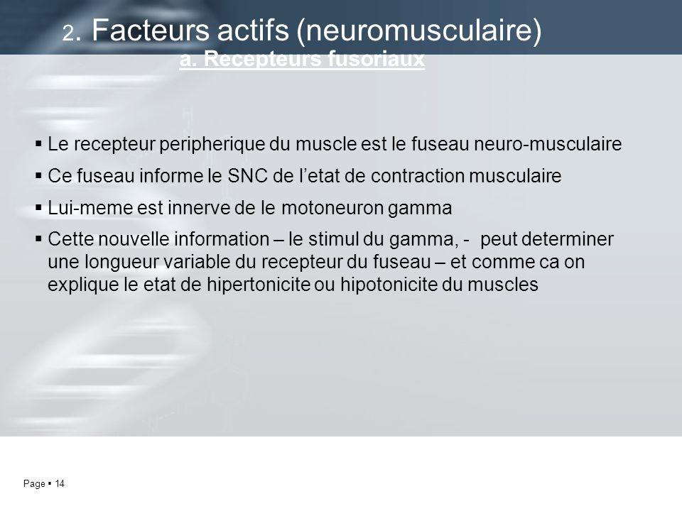Page 14 Le recepteur peripherique du muscle est le fuseau neuro-musculaire Ce fuseau informe le SNC de letat de contraction musculaire Lui-meme est in