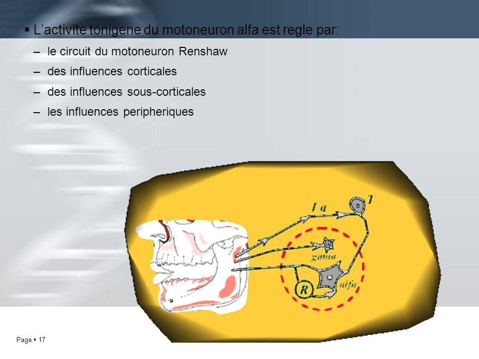 Page 17 Lactivite tonigene du motoneuron alfa est regle par: –le circuit du motoneuron Renshaw –des influences corticales –des influences sous-cortica