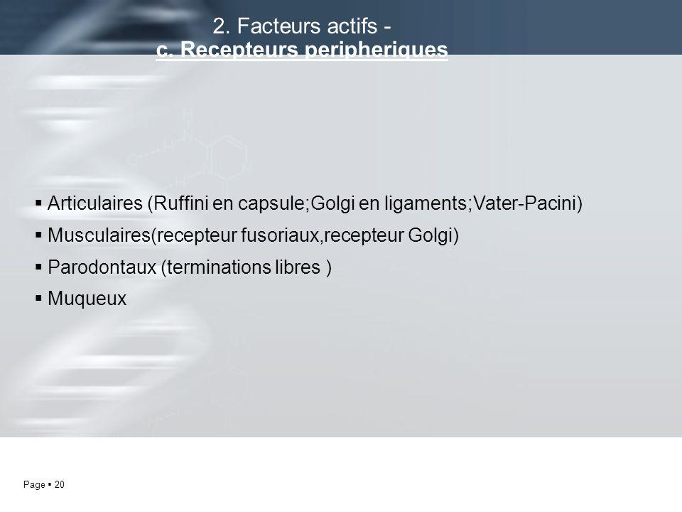 Page 20 Articulaires (Ruffini en capsule;Golgi en ligaments;Vater-Pacini) Musculaires(recepteur fusoriaux,recepteur Golgi) Parodontaux (terminations l