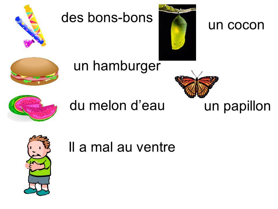 des bons-bons un hamburger du melon deau Il a mal au ventre un cocon un papillon