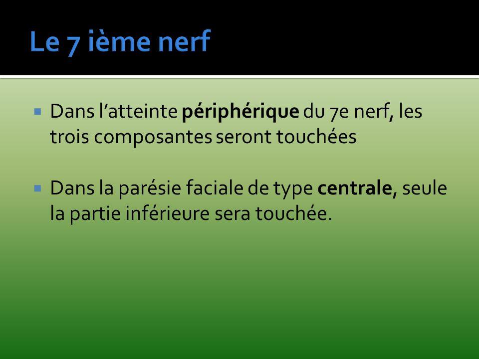 Dans latteinte périphérique du 7e nerf, les trois composantes seront touchées Dans la parésie faciale de type centrale, seule la partie inférieure ser