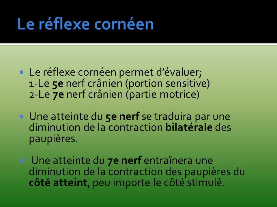 Le réflexe cornéen permet dévaluer; 1-Le 5e nerf crânien (portion sensitive) 2-Le 7e nerf crânien (partie motrice) Une atteinte du 5e nerf se traduira