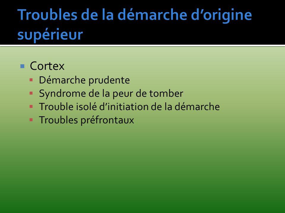 Cortex Démarche prudente Syndrome de la peur de tomber Trouble isolé dinitiation de la démarche Troubles préfrontaux