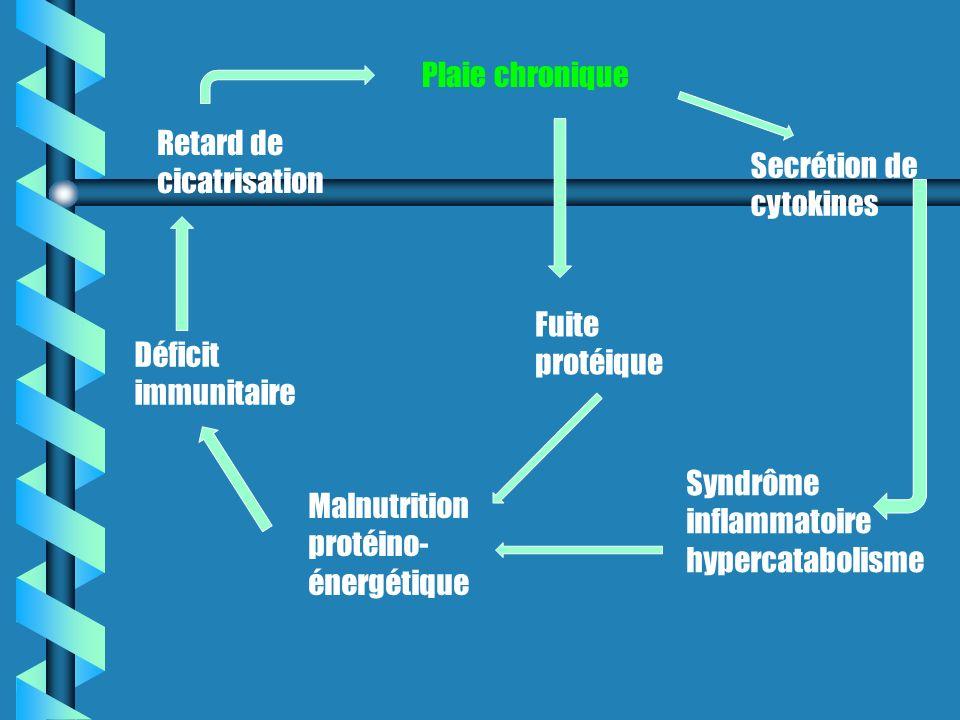 Retard de cicatrisation Plaie chronique Secrétion de cytokines Syndrôme inflammatoire hypercatabolisme Fuite protéique Malnutrition protéino- énergétique Déficit immunitaire