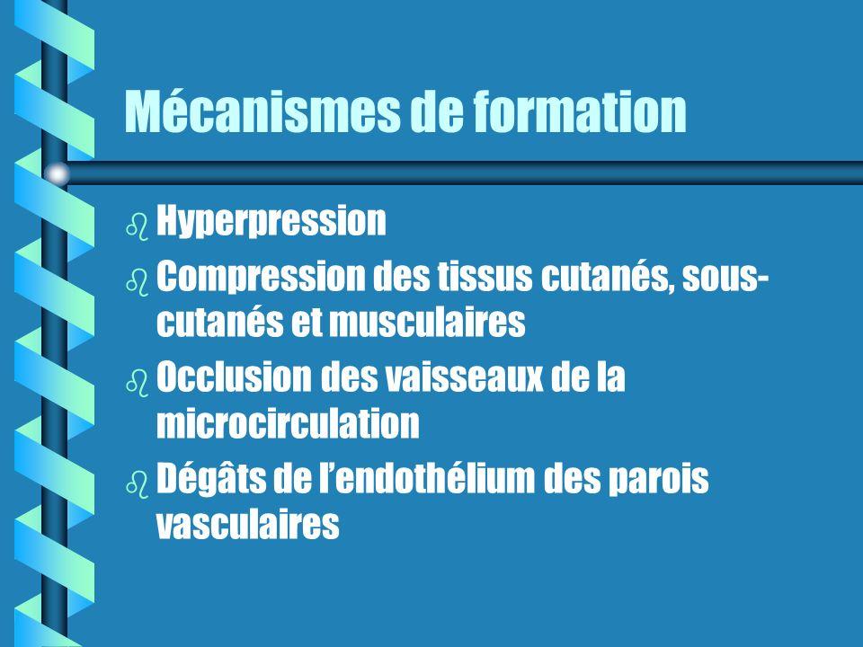 Mécanismes de formation b b Hyperpression b b Compression des tissus cutanés, sous- cutanés et musculaires b b Occlusion des vaisseaux de la microcirculation b b Dégâts de lendothélium des parois vasculaires