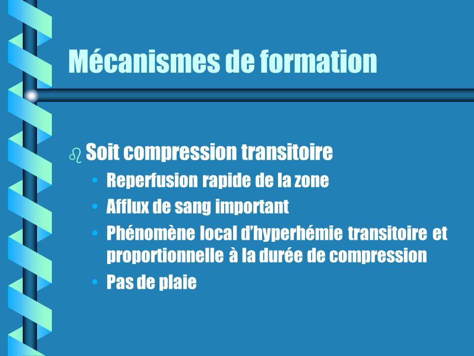 Mécanismes de formation b b Soit compression transitoire Reperfusion rapide de la zone Afflux de sang important Phénomène local dhyperhémie transitoire et proportionnelle à la durée de compression Pas de plaie