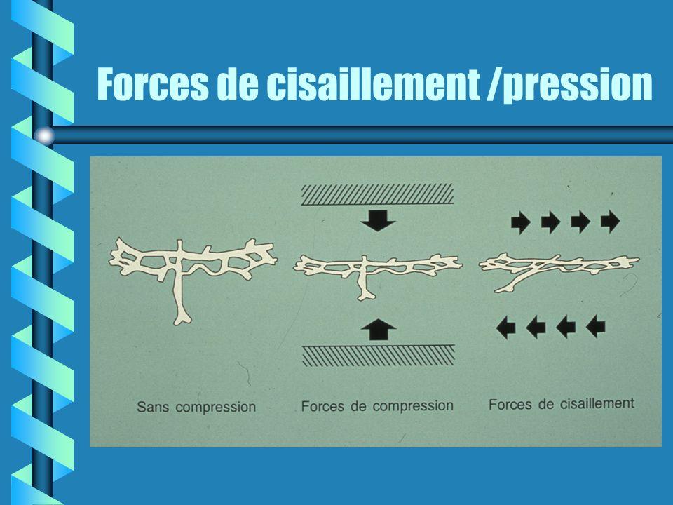Forces de cisaillement /pression