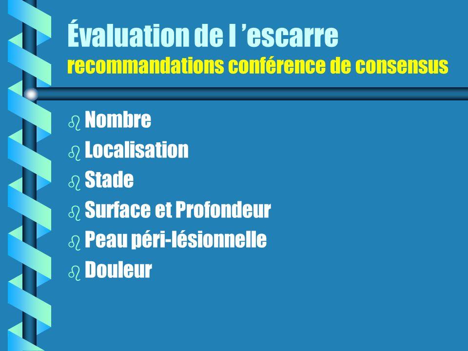 Évaluation de l escarre recommandations conférence de consensus b b Nombre b b Localisation b b Stade b b Surface et Profondeur b b Peau péri-lésionnelle b b Douleur