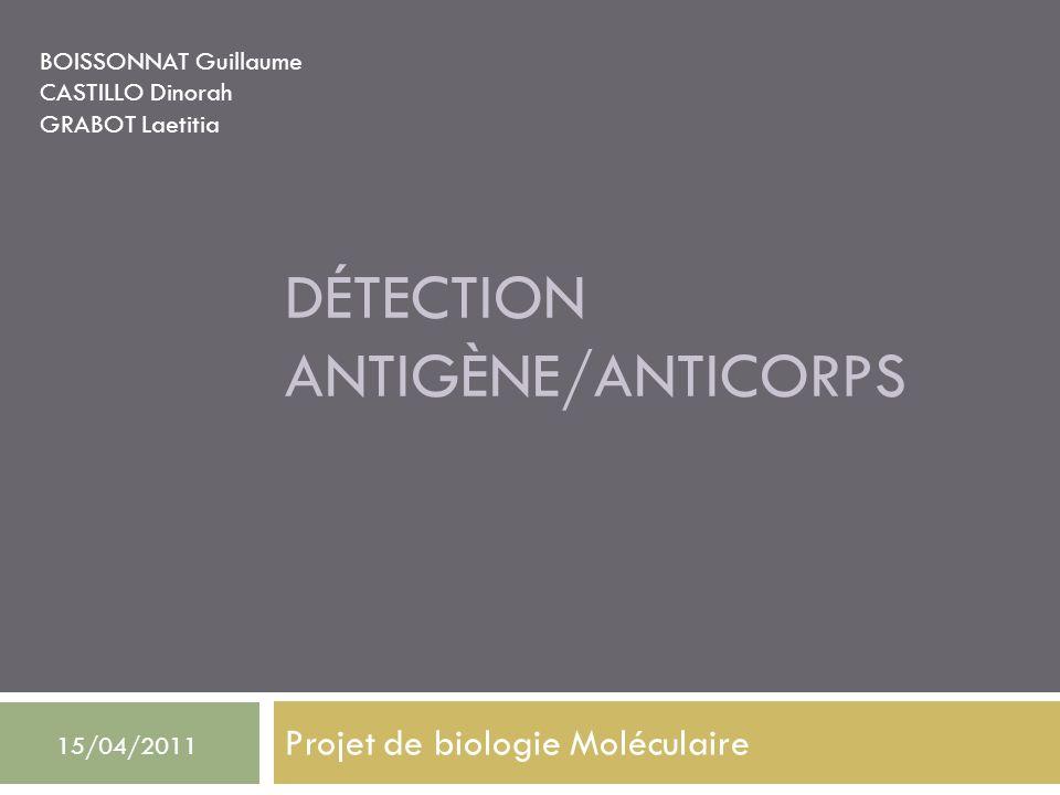 DÉTECTION ANTIGÈNE/ANTICORPS Projet de biologie Moléculaire BOISSONNAT Guillaume CASTILLO Dinorah GRABOT Laetitia 15/04/2011