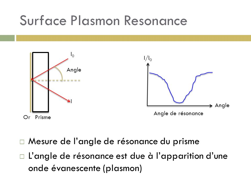 Surface Plasmon Resonance Angle OrPrisme I0I0 I I/I 0 Angle Mesure de langle de résonance du prisme Langle de résonance est due à lapparition dune ond