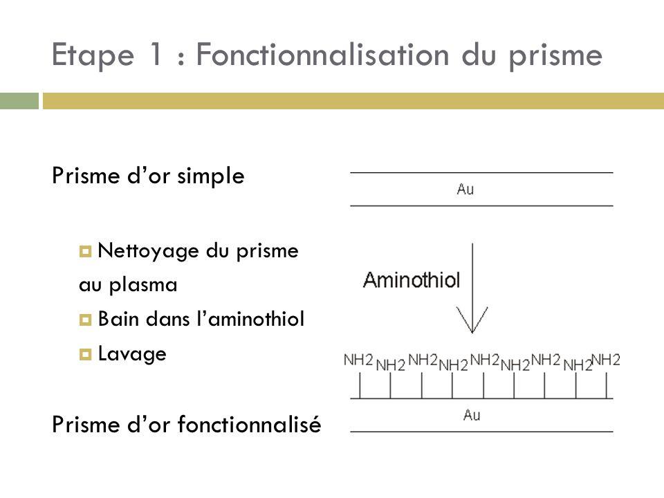 Etape 1 : Fonctionnalisation du prisme Prisme dor simple Nettoyage du prisme au plasma Bain dans laminothiol Lavage Prisme dor fonctionnalisé