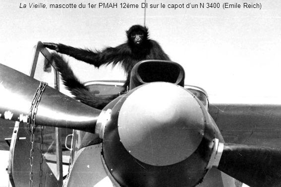 La Vieille, mascotte du 1er PMAH 12ème DI sur le capot dun N 3400 (Emile Reich)