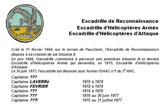 Créé le 1 er février 1964, sur le terrain de Pau-Uzein, l'Escadrille de Reconnaissance dispose à sa création de six Alouette II. En juin 1966, l'escad