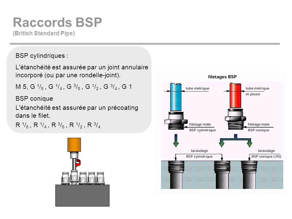 Raccords BSP (British Standard Pipe) BSP cylindriques : L'étanchéité est assurée par un joint annulaire incorporé (ou par une rondelle-joint). M 5, G