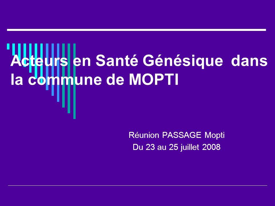 Acteurs en Santé Génésique dans la commune de MOPTI Réunion PASSAGE Mopti Du 23 au 25 juillet 2008