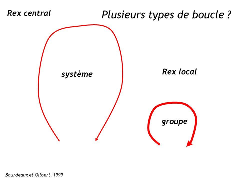 Rex central Rex local groupe système Bourdeaux et Gilbert, 1999 Plusieurs types de boucle ?