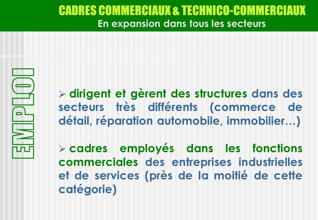 CADRES COMMERCIAUX & TECHNICO-COMMERCIAUX En expansion dans tous les secteurs dirigent et gèrent des structures dans des secteurs très différents (com