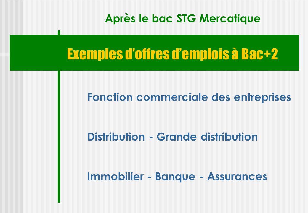 Exemples doffres demplois à Bac+2 Après le bac STG Mercatique Fonction commerciale des entreprises Distribution - Grande distribution Immobilier - Ban