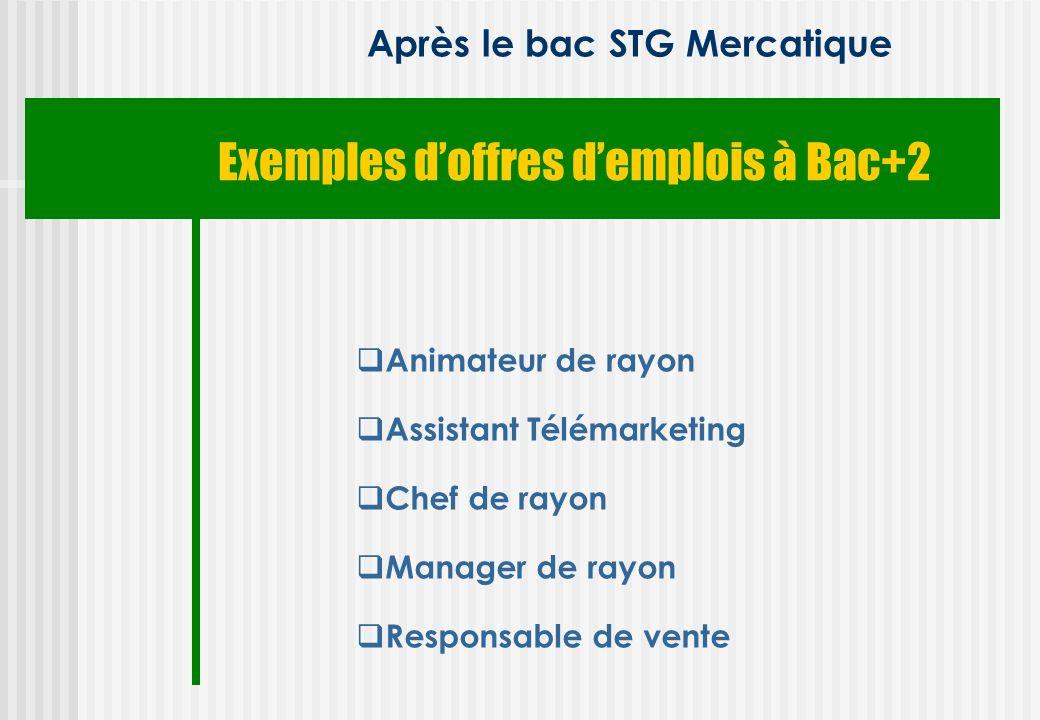 Exemples doffres demplois à Bac+2 Après le bac STG Mercatique Animateur de rayon Assistant Télémarketing Chef de rayon Manager de rayon Responsable de