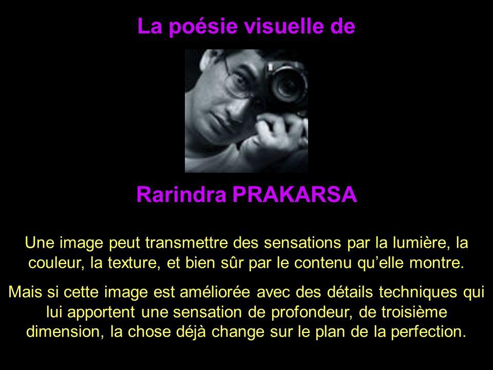 La poésie visuelle de Une image peut transmettre des sensations par la lumière, la couleur, la texture, et bien sûr par le contenu quelle montre.